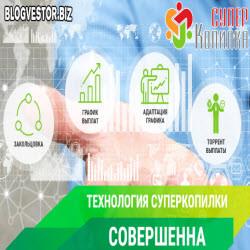 Отчет доходов за 10 — 16 февраля 2020 + Готовимся к адаптации в самом стабильном проекте СуперКопилке!