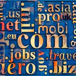 Обзор способов заработка в Интернете: «Киберсквоттинг – Интернет Бизнес на доменных именах!»