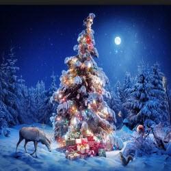 Отчет доходов за 19 — 25 декабря 2016 + Готовимся к праздникам!