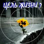 kakova-moya-cel-zhizni-19.08.15