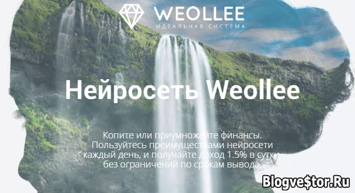weollee-otzyvy-i-obzor-proekta