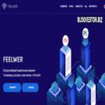 FeelweR (110-125-170% за 48 часов/4-10 дней + 5% Авто-RCB + Instant) — Отзывы и Обзор нового высокодоходника с хорошим профитом!